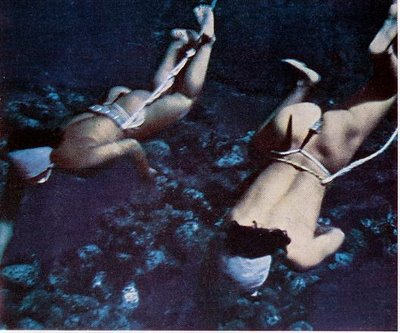Ama Japanese Divers